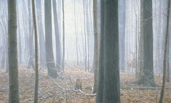 "Robert Bateman Handsigned & Numbered Limited Edition Canvas Giclee:""Hardwood Forest"""