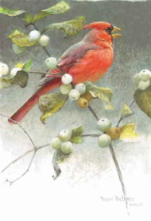"Robert Bateman Handsigned & Numbered Limited Edition:""Cardinal And Strawberries"""