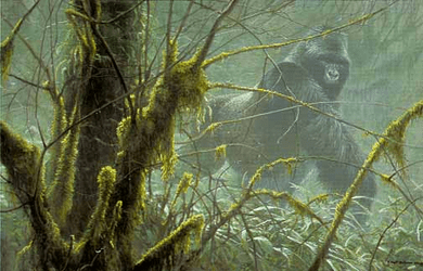 "Robert Bateman Handsigned & Numbered Limited Edition Giclee on Canvas:"" Intrusion - Mountain Gorilla """