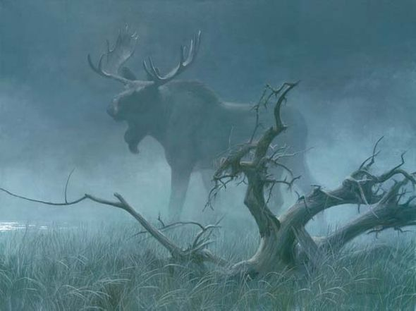 "Robert Bateman Handsigned & Numbered Limited Edition Giclee on Canvas:""Moose in Moonlight"""