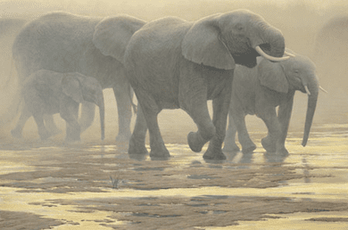 """Robert Bateman Limited Edition Canvas:""""By The River"""""""
