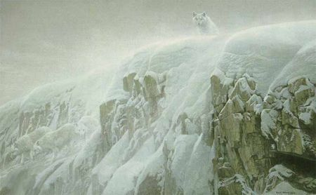 "Robert Bateman Limited Edition Giclee Canvas:""Arctic Cliff-White Wolves Showstopper"""
