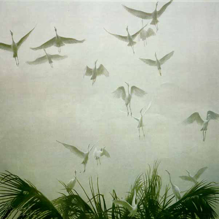 "Robert Bateman Limited Edition Paper Print:""Egrets Of The Sacred Grove"""