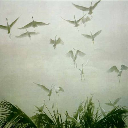 """Robert Bateman Limited Edition Paper Print:""""Egrets Of The Sacred Grove"""""""