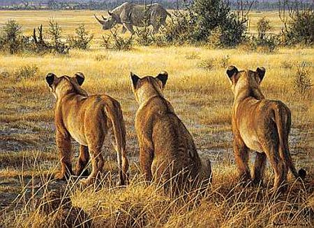 """Robert Bateman Limited Edition Paper Print:""""Passing Fancy-Lion Cubs And Rhino"""""""