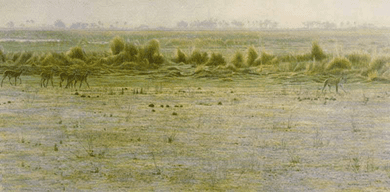 """Robert Bateman Limited Edition Print:Peacable Kingdom: """"Lechwe and Lioness"""""""