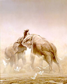 "Robert Bateman Limited Edition Print:""Sparring Elephants"""