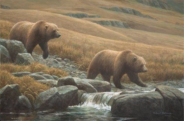 """Robert Bateman Limited Edition Signed and Numbered Canvas Giclee:""""Courting Grizzlies"""""""