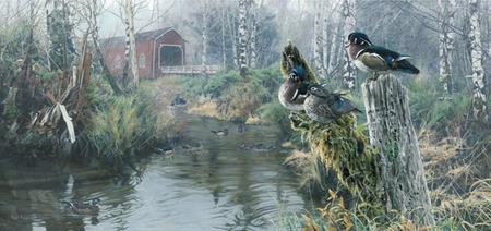 """Rod Frederick Limited Edition Print:""""Under Cover - Wood Ducks """""""