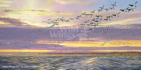 "Ron Van Gilder Hand Signed and Numbered Limited Edition:""Grand Passage-Canvasbacks"""