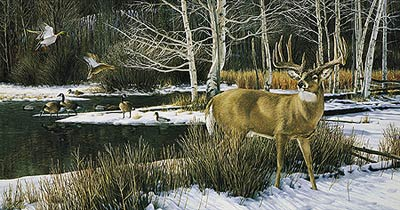"""Ron Van Gilder Limited Edition Print:""""The Haven-Whitetail Deer"""""""