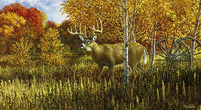 """Ron Van Gilder Limited Edition Print:""""When Color Is King-Whitetail Deer"""""""