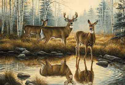"""Rosemary Millette Hand Signed and Numbered Artist Proof Limited Edition Print: """"Autumn Reflections"""""""