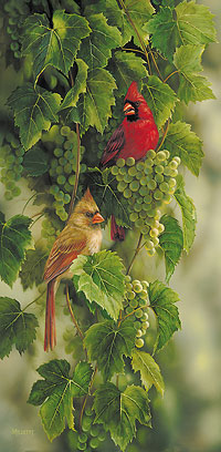 """Rosemary Millette Hand Signed and Numbered Limited Edition Artist Proof Print: """"Vineyard - Cardinals"""""""