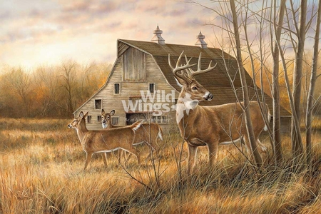 """Rosemary Millette Hand Signed and Numbered Limited Edition Print: """"Deserted Farmstead – Whitetail Deer """""""