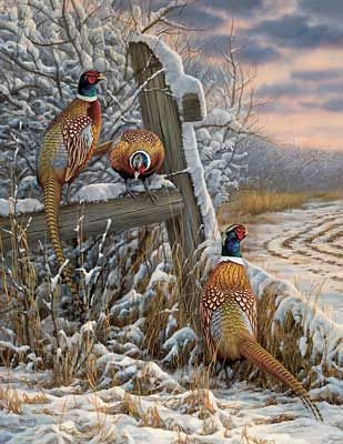 """Rosemary Millette Hand-signed and Numbered Limited Edition Artist Proof Print: """"Forgotten Fenceline-Pheasants"""""""