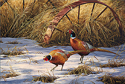"""Rosemary Millette Limited Edition Print: """"Heartland Heritage - Pheasants"""""""