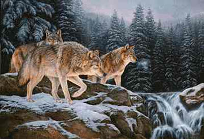 """Rosemary Millette Limited Edition Print: """"Spirit of the Wild-Wolf"""""""