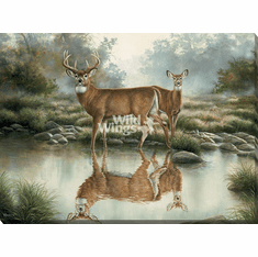 """Rosemary Millette Oversized Open Edition Wrapped Canvas::""""Tranquil Waters – Whitetail Deer"""""""