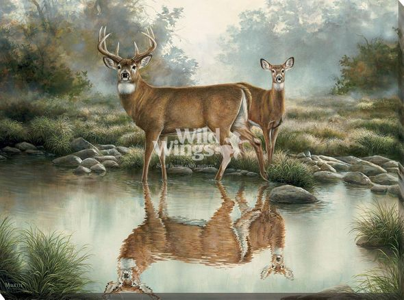 """Rosemary Millette Oversized Open Edition Wrapped Canvas:""""Tranquil Waters - Whitetail Deer"""""""