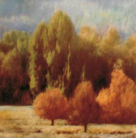 """Sally Wetherby Signed and Numbered Limited Edition Giclée on Canvas:""""West Marin III"""""""