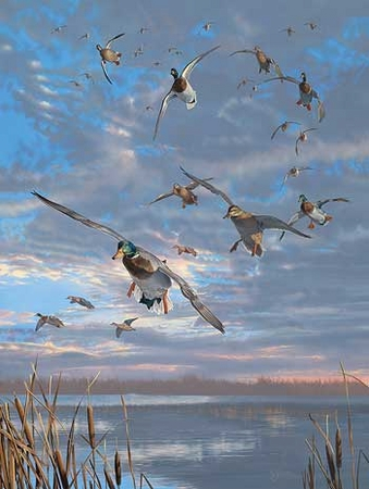 """Scot Storm Handsigned and Numbered Limited Edition Artist Proof Print: """"Closing Minutes-Mallards Artist Proof"""""""