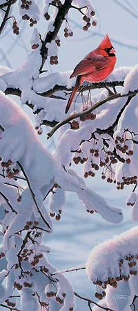 """Scot Storm Handsigned and Numbered Limited Edition Print:  """"Winter Crimson"""""""