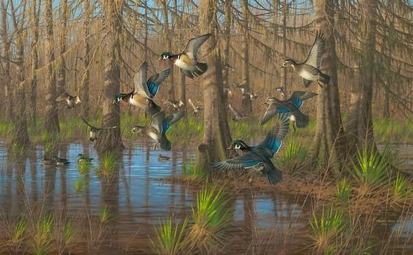 """Michael Sieve Hand Signed and Numbered Limited Edition Canvas Giclee:""""Party Time—Wood Ducks"""""""