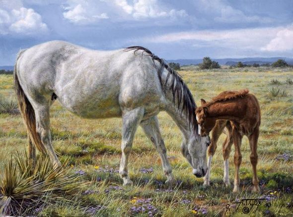"Tim Cox Artist Hand-Signed and Numbered Limited Edition Print:""Horse Whisperer"""