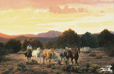 """Tim Cox Hand Signed and Numbered  Limited Edition Print :""""Evening Glow"""""""