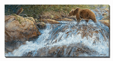 "Valeria Yost Open Edition Gallery Wrapped Canvas:""Wilderness Walk—Grizzly"""