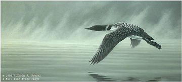 "Wilhelm Goebel Limited Edition Paper Print:""Misty Flight - Loon"""