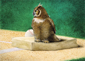 """Will Bullas Fine Art Signed Open Edition Canvas :""""Hoo's on First"""""""
