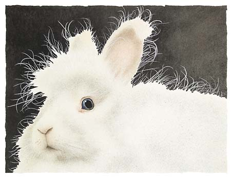 """Will Bullas Limited Edition Print: """"Mr. Harry Buns"""""""