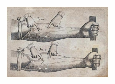 """William Harvey Fine Art Open Edition Giclée:""""Discovery of the Circulation of Blood"""""""