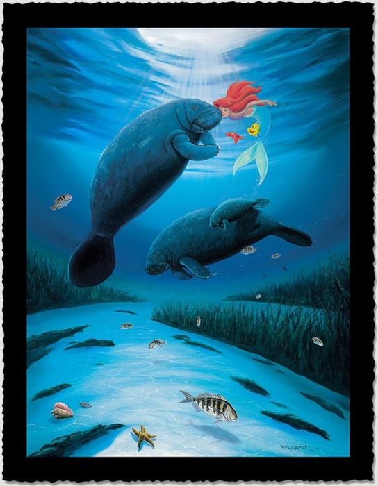 Wyland Artist Signed Limited Edition Giclee On Hand