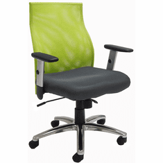 Ergo Vibrant Office Chair