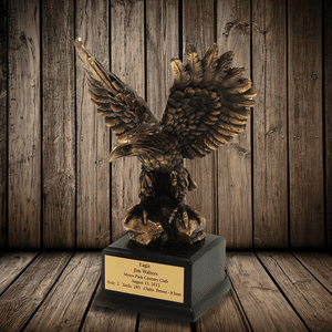 Eagle, Best Round, Albatross Awards