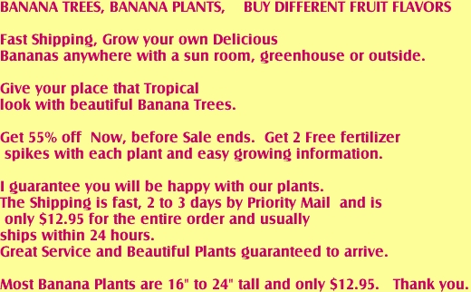 "BANANA TREES, BANANA PLANTS,    BUY DIFFERENT FRUIT FLAVORS <B><BR> <BR>Fast Shipping, Grow your own Delicious <BR>Bananas anywhere with a sun room, greenhouse or outside. <BR> <BR>Give your place that Tropical <BR>look with beautiful Banana Trees.<BR>  <BR>Get 55% off  Now, before Sale ends.  Get 2 Free fertilizer<BR> spikes with each plant and easy growing information. <BR><BR>I guarantee you will be happy with our plants.  <BR>The Shipping is fast, 2 to 3 days by Priority Mail  and is  <BR> only $12.95 for the entire order and usually <BR>ships within 24 hours. <BR>Great Service and Beautiful Plants guaranteed to arrive.<BR> <BR>Most Banana Plants are 16"" to 24"" tall and only $12.95.   Thank you.</FONT>"