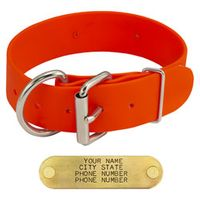 shop Orange K-9 Komfort 1.5 in. TufFlex D-End Collar