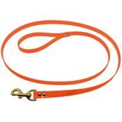shop 1 in. Day Glow 6 ft. Lead