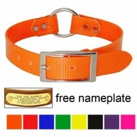shop 1 in. Day Glow Center Ring Collars