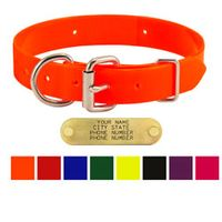 shop 1 in. Day Glow D-End Dog Collars