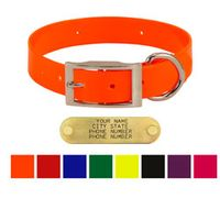 shop 1 in. Day Glow Standard Dog Collars