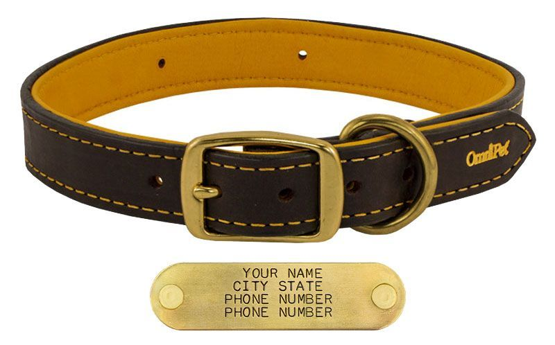 a3039c7ed9821 ... Dogs$$$$$$Dog Collars with FREE NAME Plates##%%##Leather Dog Collars  for Hunting & Active Dogs~~||~~Size