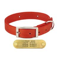 shop 1 in. Field-Grade Treated Nylon Standard Dog Collar