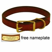 shop 1 in. K-9 Komfort Deluxe Leather Standard Dog Collar