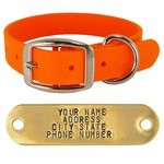 TufFlex 1 in. Standard Dog Collar