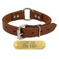 shop 1 in. Leather Center-Ring Collar