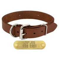 shop 1 in. Leather Dee-End Dog Collar